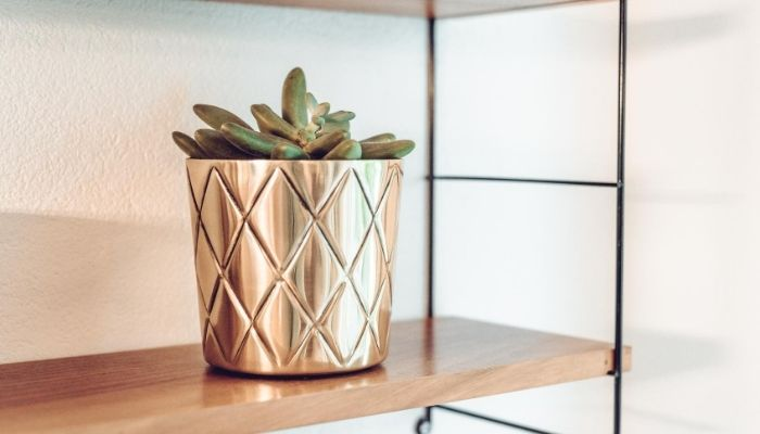 Add a special touch with a gold shelf