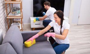 Disinfect A Sofa